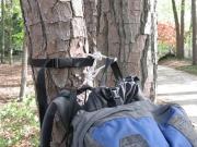 Tree Hook
